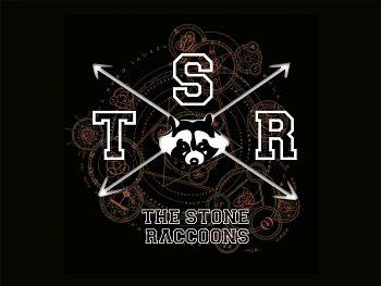 Tsr The Stone Raccoons, Bandas de Punk Rock  de Bogota.