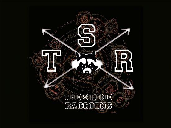 T.s.r The Stone Raccoons, Imagenes de Bandas de Metal & Rock Colombianas
