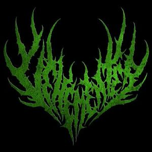 Vehementer, Bandas de Brutal Death Grind de Bogota.